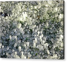 Ice On The Lawn Acrylic Print