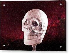 Ice Skull Acrylic Print