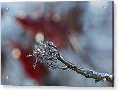 Ice Wand Acrylic Print