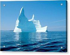 Iceberg Acrylic Print by Douglas Pike