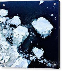 Iced Beauty #1 Acrylic Print
