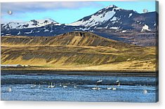 Iceland Landscape # 3 Acrylic Print by Allen Beatty
