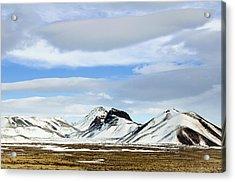 Icelandic Wilderness Acrylic Print