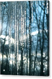 Icicle Art Fun 10 Acrylic Print by Debra     Vatalaro