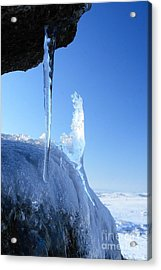 Icicle Acrylic Print by Carl Whitfield