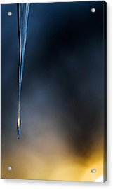 Icicle  Acrylic Print by Jane Melgaard