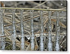 Acrylic Print featuring the photograph Icicles On A Stick by Glenn Gordon