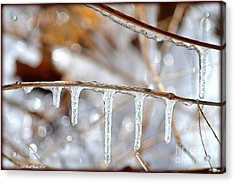 Icicles And Bokeh Acrylic Print by Deb Badt-Covell