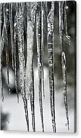 Acrylic Print featuring the photograph Icicles by Juls Adams
