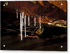 Icicles Acrylic Print by Richard Steinberger
