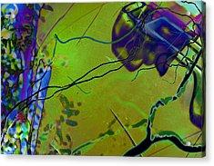 iCurly.02 Acrylic Print