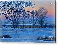 Icy Beauty Acrylic Print