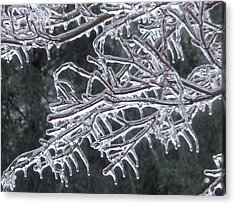 Acrylic Print featuring the photograph Icy Branch by Jeanette Oberholtzer