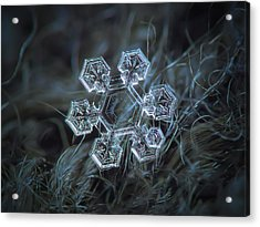 Acrylic Print featuring the photograph Icy Jewel by Alexey Kljatov