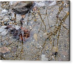 Acrylic Print featuring the photograph Icy Stream by Scott Kingery