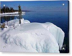 Icy Superior Beauty Acrylic Print
