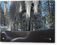 Icy Viewpoint Acrylic Print by Donna Blackhall