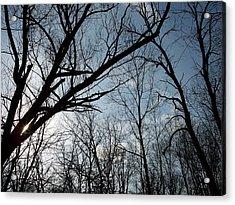 Icy Winter Sky Acrylic Print