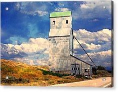 Idaho Grain Elevator Acrylic Print by Marty Koch