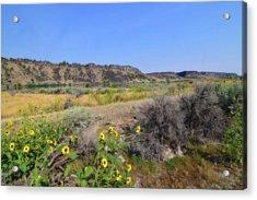 Idaho Landscape Acrylic Print by Bonnie Bruno