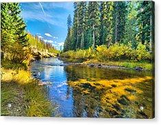 Idaho Stream 2 Acrylic Print
