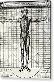 Ideal Proportions Based On The Human Body Acrylic Print by Cesare di Lorenzo Cesariano