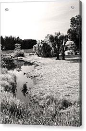 Idylic Stream Acrylic Print by Everett Bowers