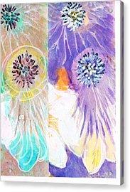 If Acrylic Print by Anne-Elizabeth Whiteway