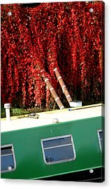 If Only It All Looked Like This Acrylic Print by Jez C Self