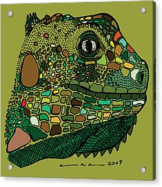 Iguana - Color Acrylic Print by Karl Addison