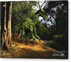 Iguanodon In The Jungle Acrylic Print by Frank Wilson