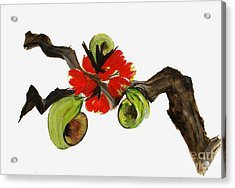 Ikebana - Red N Green Acrylic Print