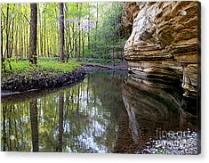 Illinois Canyon In Spring Acrylic Print by Paula Guttilla