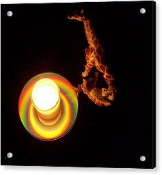 Illuminated Objects Acrylic Print