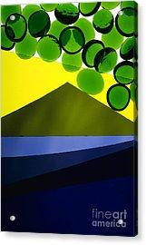 Illuminations 82 Acrylic Print by Barbara Chase