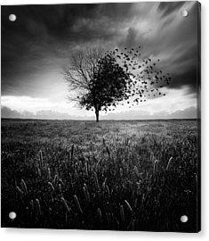 Illusion D'un Printemps Perdu Acrylic Print by Sebastien Del Grosso