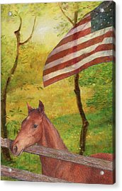 Illustrated Horse In Golden Meadow Acrylic Print