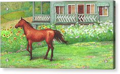 Illustrated Horse Summer Garden Acrylic Print