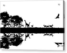 Illustration Of African Safari Concept Silhouette Image Acrylic Print by Matthew Gibson