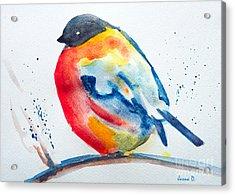 I'm Cold Acrylic Print by Jasna Dragun
