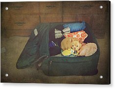 I'm Going With You Acrylic Print by Laurie Search