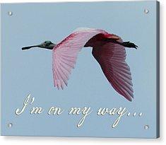I'm On My Way Acrylic Print by Mary Elizabeth Thompson