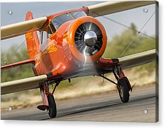 Image Of Staggerwing Proportions Acrylic Print