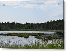 Images From Mt. Desert Island Maine 1 Acrylic Print
