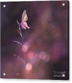 Imagine ... Believe It - 02a Acrylic Print by Variance Collections