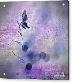 Imagine ... Believe It - 44at01 Acrylic Print by Variance Collections