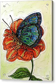 Imagine Butterflies A Acrylic Print