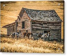 #2204 - Harrison Montana Acrylic Print