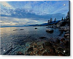 Immersed Acrylic Print by Sean Sarsfield