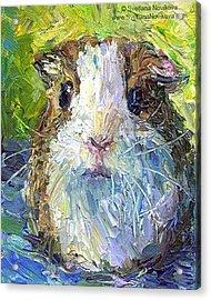 Impasto Impressionistic  Guinea Pig Art Acrylic Print